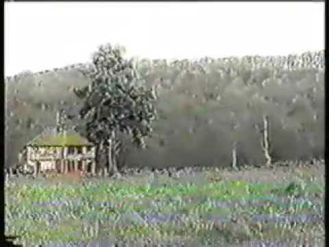 VHS Generation Loss excerpt1