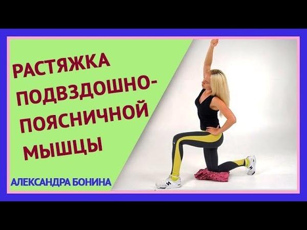 ►РАСТЯЖКА подвздошно-поясничной мышцы. Кому особенно нужна? Как правильно делать растяжку.