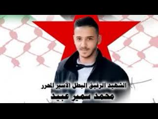 Des soldats d'occupation israéliens enlèvent les affiches du martyr mohammed obaid