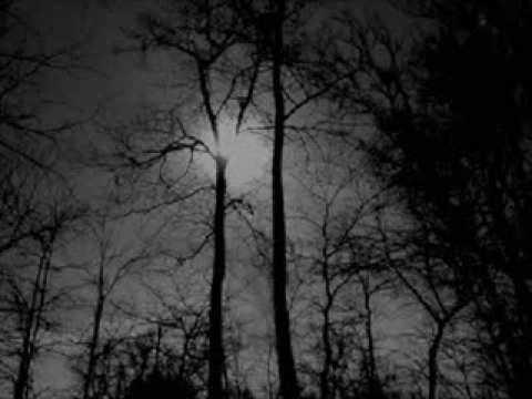 Bathory - Foreverdark Woods