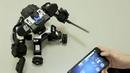 Настоящий робот боец GANKER Устрой бои роботов у себя дома
