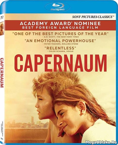 Капернаум / Capernaum / Capharnaüm (2018/BDRip/HDRip)