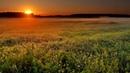 Живописный закат Пение птиц Умиротворение под вечерние звуки природы