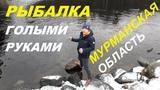 Рыбалка в Мурманской области на реке Куреньга, г. Оленегорск