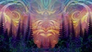 Visionary Art Visuals ~ Yaima Simon Haiduk demo