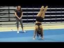 Cheerleading Tips How to do a Roundoff Coach Audra Scofield
