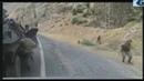 Askere yapılan hain saldırı görüntüleri şehit haberleri