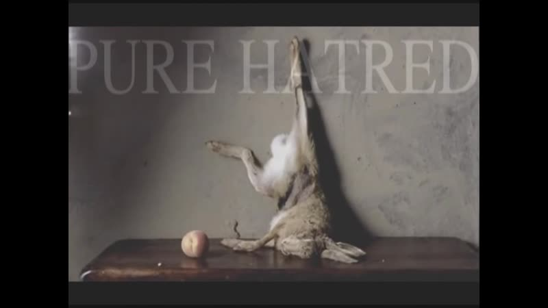PURE HATRED - A little death
