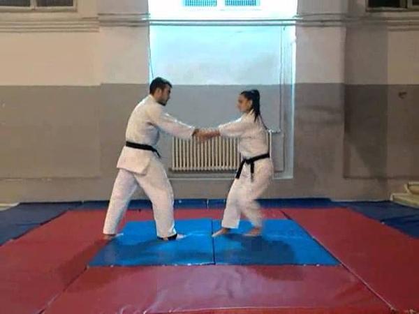 Seitei Jujutsu Kata