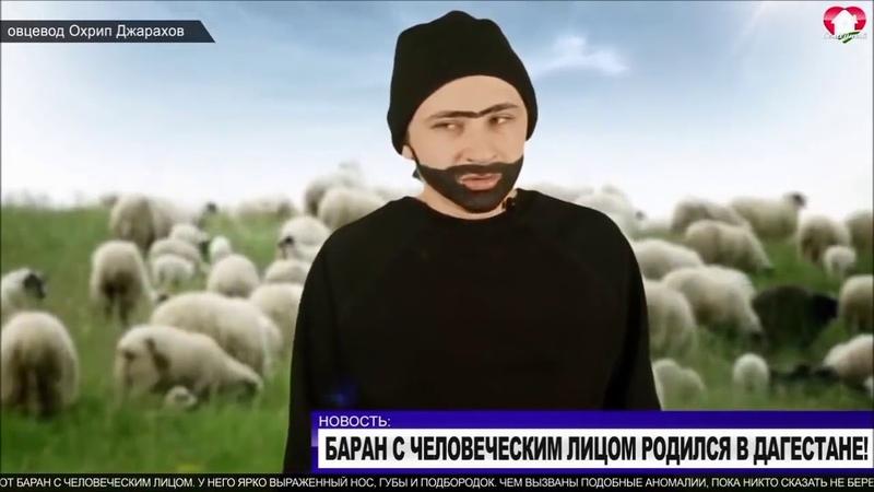 Изнасиловал Барана 😰