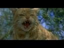 Лучший друг человека (Man's Best Friend, 1993) - трейлер на русском языке