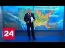 Пентагон подозревают в массовом заражении американцев болезнью Лайма Россия 24