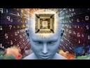 Созданные ДНК роботы едят растут и эволюционируют Искусственный интеллект и роботы против человека