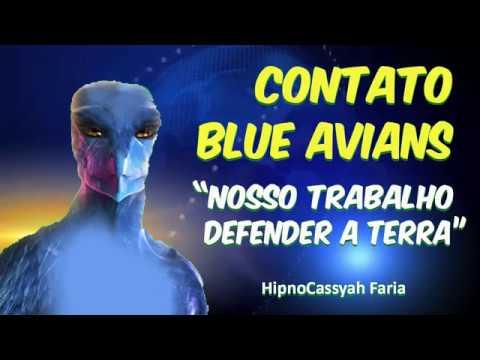 HIPNOSE - CONTATO BLUE AVIANS NOSSO TRABALHO É DEFENDER A TERRA 209