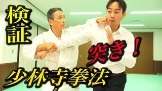 少林寺拳法に突きを出したらエラい目に!『大いなる遺産2』検証企画【2】 Shorinji Kempo, Punch control!