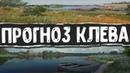 Русская Рыбалка 4●ПРОГНОЗ КЛЕВА●ФАРМ ТОЧКИ И КЛЕВЫЕ МЕСТА●