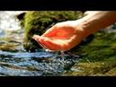 Спокойная Музыка Для Снятия Стресса - RELAXING HARP PIANO FLUTE / Stress Relief Music / NOCTURNE