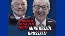 Was du noch vor den EU Wahlen 2019 wissen solltest Paneuropa Europawahl Jay2k