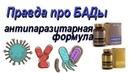 Правда о противогрибковых препаратах Какие БАДы есть на рынке