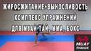 Жиросжигание выносливость - комплекс упражнений для муай тай, мма, бокс