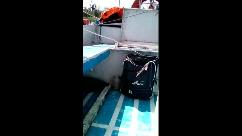 Александр призывает помочь путешественнику Алексею с яхты Викинг