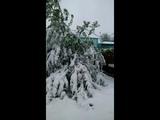 снегопад в Ленинске
