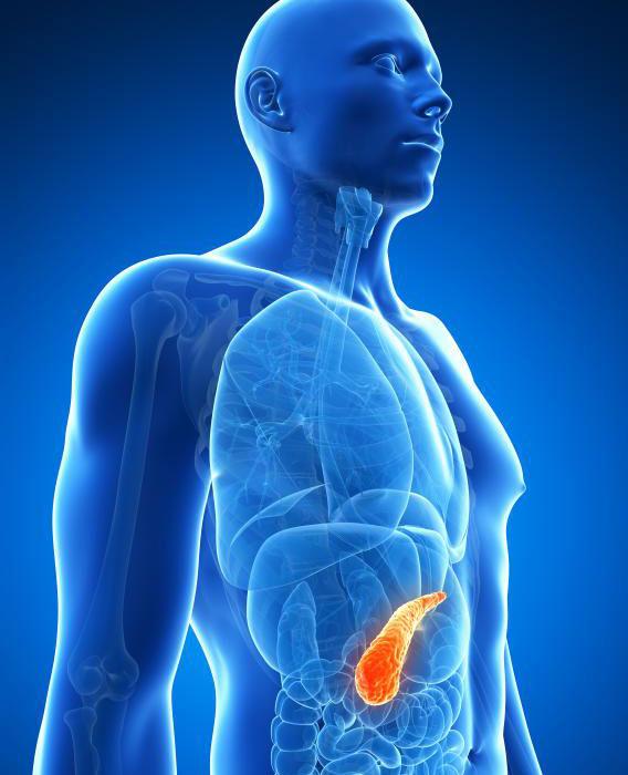 Ограничение потребления жира может помочь уменьшить шансы развития рака поджелудочной железы.