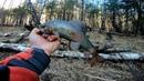 Русская рыбалка в глухой тайге, тут медведей больше чем рыбы/Заготовка икры на Алтае/река Кадрин 3