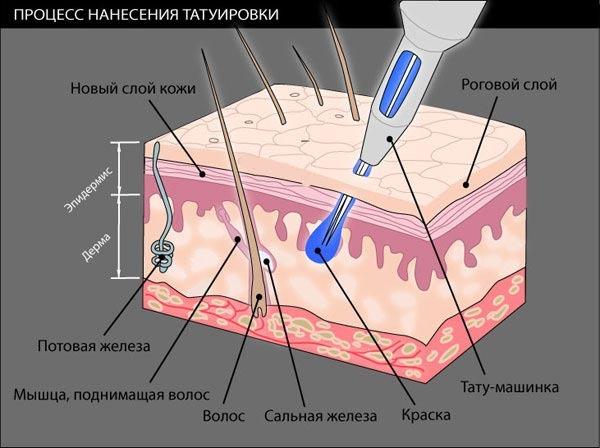 напыление пигмента на верхний слой кожи бровей