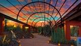 Сады мира. Пустынный сад Феникс, Аризона (Gardens of the World. Desert garden-Phoenix, Arizona)