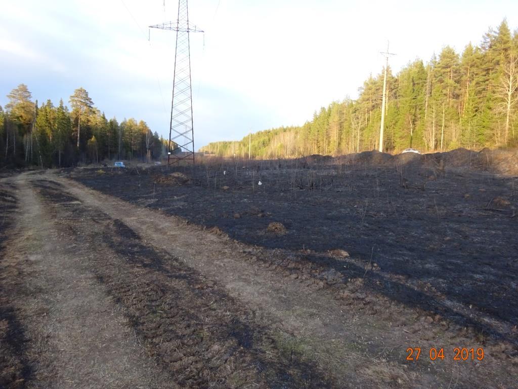 Пожар, возгорание травы, Чайковский, 2018 год