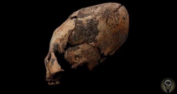 В Китае найдены вытянутые черепа возрастом 12000 лет Археологи из Китая нашли место, где совершались захоронения древних людей и обнаружили там 25 скелетов. Интересно то, что в 10 из них, черепа