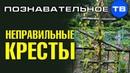 Неправильные кресты на кладбище в Осоргино Познавательное ТВ, Артём Войтенков
