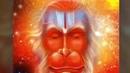 Shri Hanuman Chalisa SahajaYoga