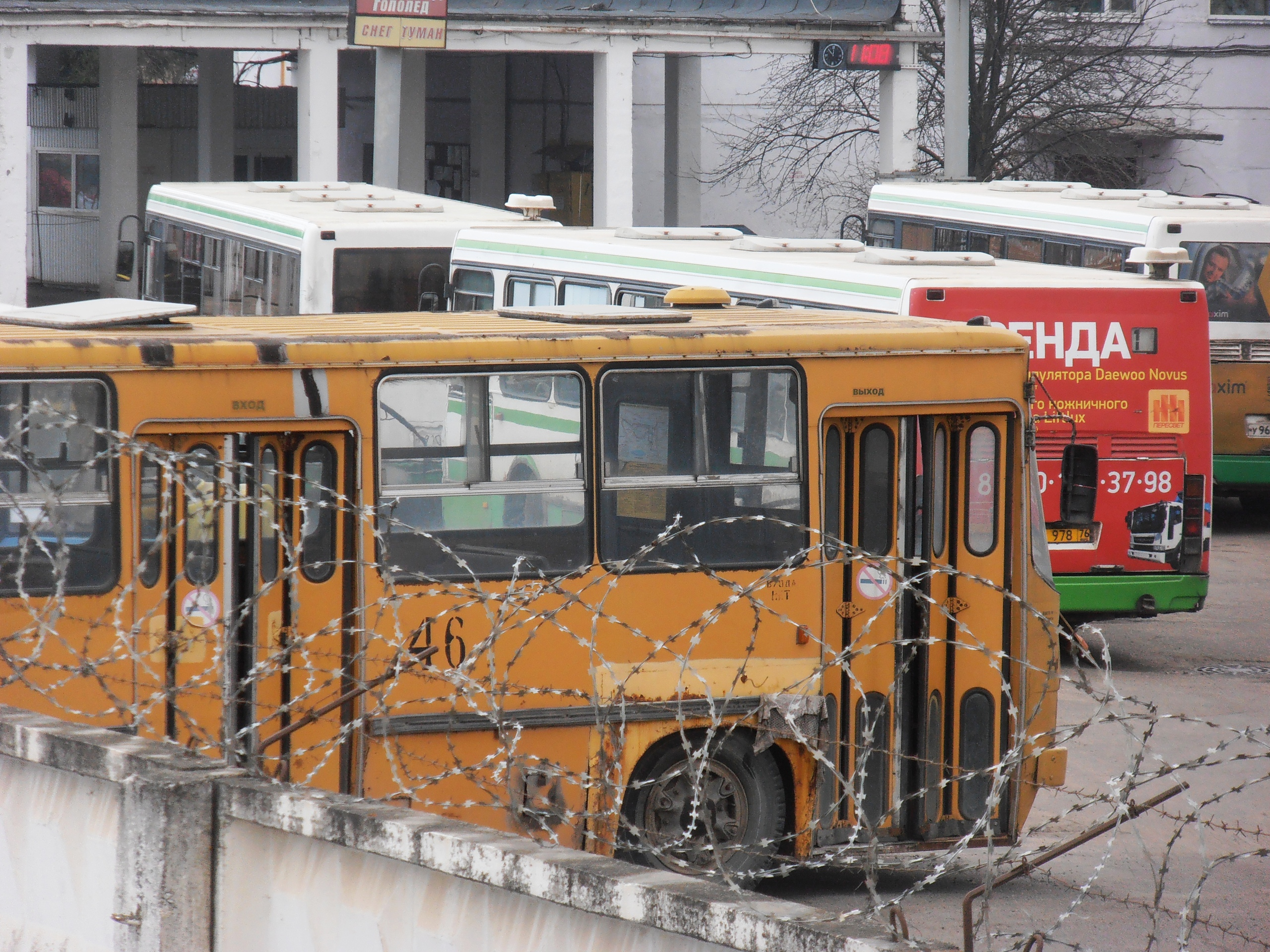 Автобус Икарус Борт 46