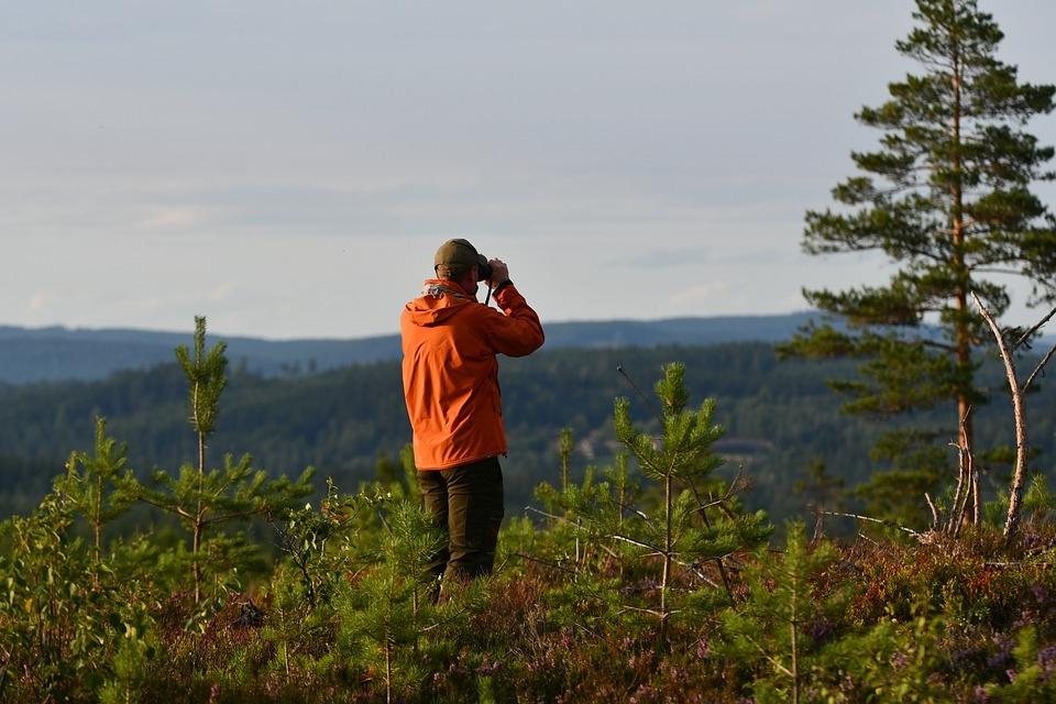 В Волжске организуют волонтерский отряд по поиску заблудившихся в лесу людей