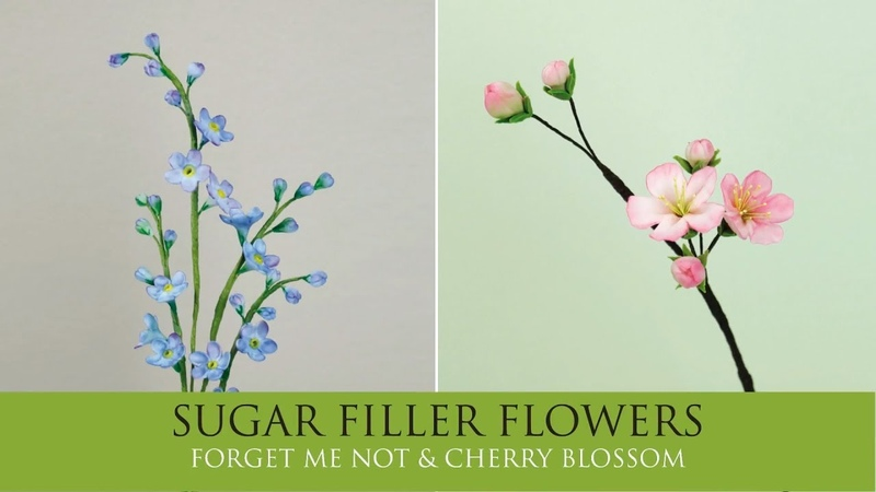 How to Make Forget Me Not Cherry Blossom Sugar Filler Flowers Part 9