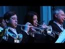 Концерт Духового оркестра г. Павлово 23 февраля 2019