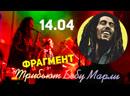 Фрагмент песни Боба Марли Punky reggae party. Трибьют.