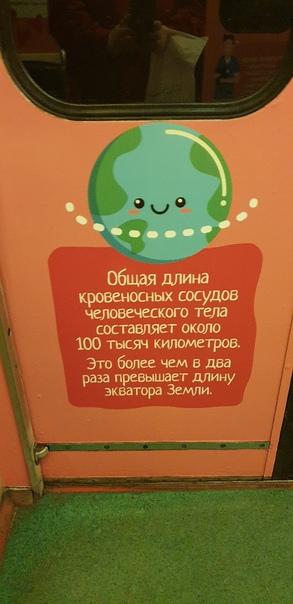 "Поезд московского метро ""Спасибо, донор!"". Когда то"