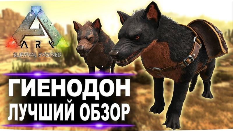 Гиенодон Hyaenodon в АРК Лучший обзор приручение разведение и способности в ark