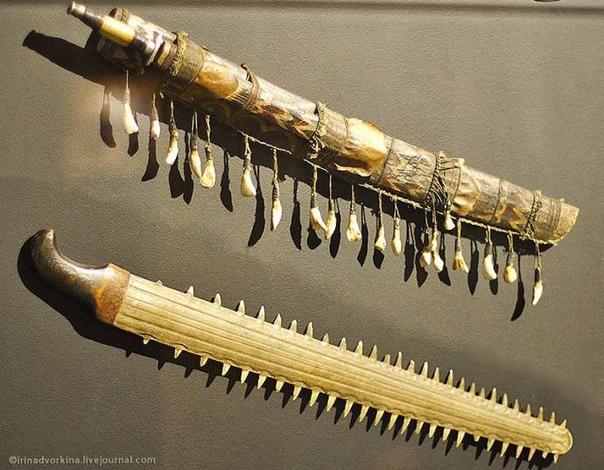 Рострумы в музеях мира Рыбная ловля издревле является основным занятием жителей островов и побережий морей и океанов. Порой их добычей становилась и рыба-пила. Люди быстро смекнули, каким