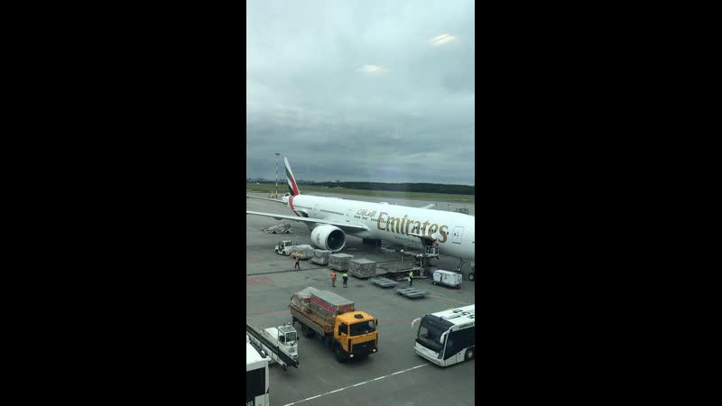 Полет в ОАЭ 🇦🇪 👍