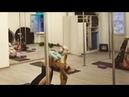 Растяжка на проработку мышц ног,спины,вытяжение позвоночника,укрепление опорно- связочного аппарата