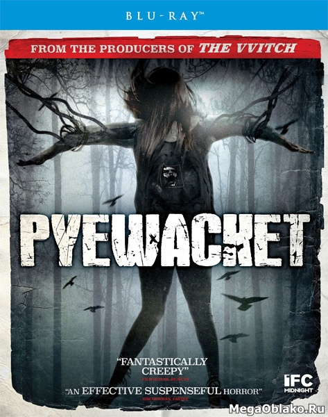 Злой дух / Близкий дух / Pyewacket (2017/BDRip/HDRip)