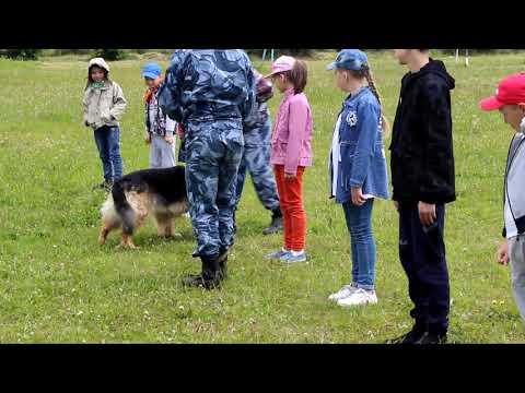 Тавдинские кинологи ИК 19 показали работу служебных собак школьникам