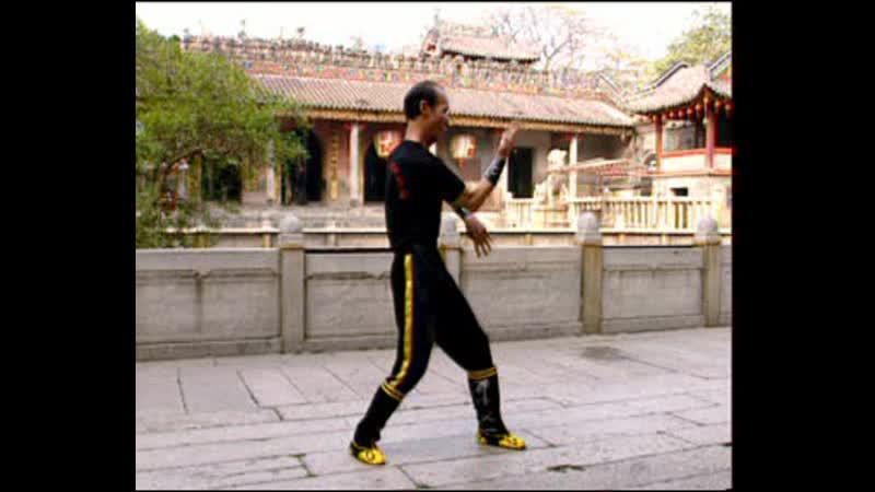 Pan Nam Ving Chun. Part 3.