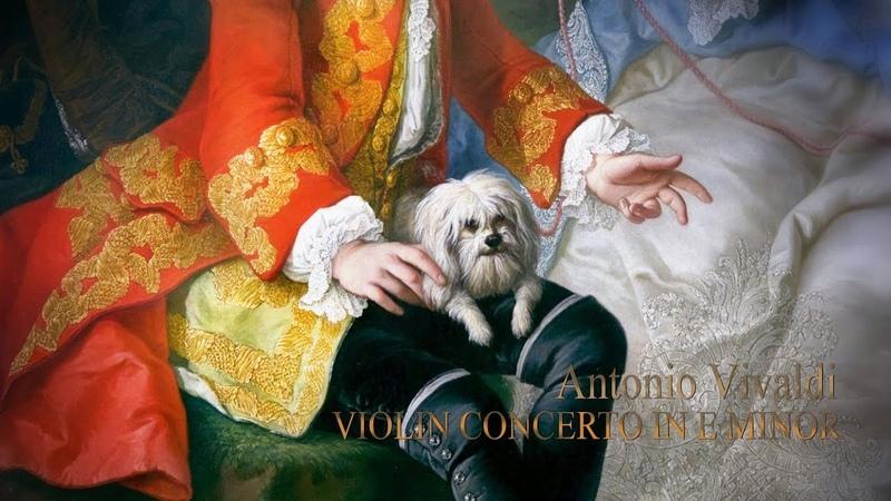A. VIVALDI: «La Stravaganza» Violin Concerto in E minor Op.4/2 RV 279, A. Martynov / Modo Antiquo