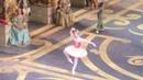 Евгения Образцова в балете Спящая Красавица