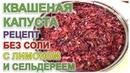 Видео рецепт вкусной квашенной капусты без соли от Елены Абрамовой